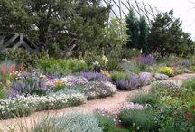 {Precedent} Herbacious border