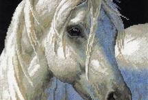 Horse shading