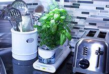 Kitchen gadgets / by Elizabeth Quinn
