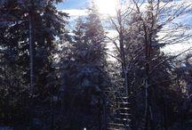 Ochsenkopf - Der Winter 2013/2014 kommt / Strahlender Sonnenschein in allen höheren Lagen Oberfrankens – wenn das der Winter ist, kann er ja erst einmal so bleiben. Die schönsten Bilder vom beginnenden oberfränkischen Winter auf dem Ochsenkopf im Fichtelgebirge (1.024 Meter) vom 12. November 2013 gibt es hier. Den Beitrag dazu findet Ihr hier: http://tinyurl.com/o2694my