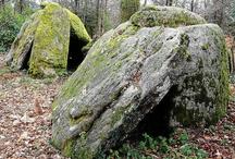 Landes de Lanvaux / Venez découvrir le Patrimoine riche et exceptionnel des Landes de Lanvaux.