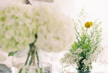 Wedding Decor  / Boards for my brides! / by Robyn Vining, Photographer
