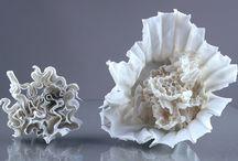 Ceramic bioforms
