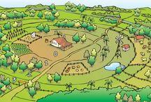Agricoltura Biodinamica di Rudolf Steiner