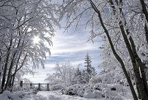 Årstider - vinter