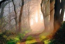 Fairytale Landscapes