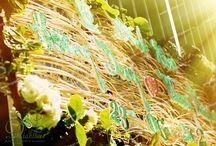 TRANG TRÍ NHÀ / DIANTHUS WEDDING DECOR  www.weddingdecor.vn 0917 489 600  #dianthus #weddingdecor #trangtrinha