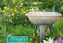 www.effimera.eu Franchising 2015 Effimera Beauty Wellness Store / www.effimera.eu Franchising 2015 Effimera Beauty Wellness Store