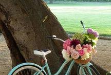 Bisiklet ozgurluktur,huzurdur