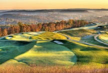 Golf Destination: Pete Dye at French Lick / French Lick Pete Dye Golf and surrounding county attractions / by Janice Apple