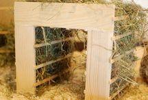 DIY rabbit stuf
