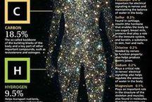 Seamo's Science / Science in general