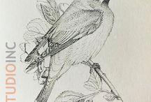 Art / VC Studio Inc. Artwork. Oil painting, pencil, pointillism, watercolor, mixed media....