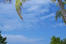 Beaches/Strande