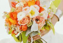 wedding planning / by Heather Peta