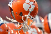 Clemson Tigers / by Garden City Realty