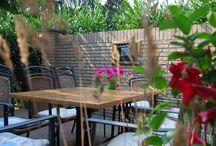 Tuin en Terras / Ons restaurant beschik over een schaduwrijk terras waar je heerlijk kunt genieten van een diner of een glaasje wijn