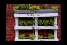 Salat-Bar aus Paletten / Eine neue Do it Yourself Inspiration für Euch aus dem Bereich Vertikaler Garten.  Eine  Salat-Bar aus Paletten. Absolut Schneckenfrei und selbst für kleine Balkone/Gärten geeignet! Weitere Videos findet Ihr auf unseren Youtube-Kanal: https://www.youtube.com/channel/UC1VDOGofdr4z9cG887dcmAQ  Viel Spaß beim Nachbauen!