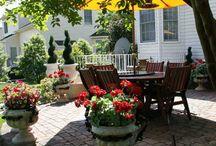 Backyard living  / by Melanie Ganes