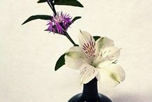 Minibana Ikebana / A minibana is, by definition, any simple flower arrangement, modest in size, that can be used for everyday life.