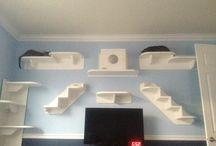Cat wall decor