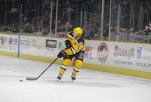 providence bruins / hockey