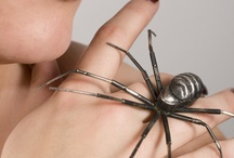 I'm scared of spiders,,,, / Aaaahhhhhh,,,,