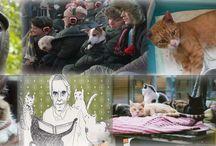 Noticias Animales / Las mejores noticias de animales, perros y gatos. Recopiladas cada semana por EN EL NOMBRE DEL GATO