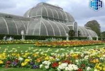 Beautiful Gardens London