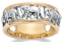 I love ELEPHANTS! / by Tempe Easterday