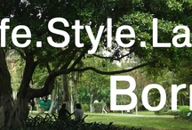 Life Style Cover