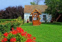 Dobré rady nejen do zahrady / Rady, návody, inpsirace pro všechny, kteří začínají se zahradničením, ale i pro pokročilé nebo ty, kdo zahradu nemají, přesto by si chtěli pěstovat květiny, bylinky i ovoce třeba doma v obýváku