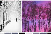 Wintertyp