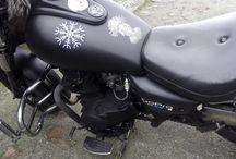 Wolfsgard's Honda Viking