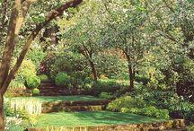 Paisajismo / Jardin