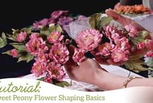 Heartfelt Creations Educational Videos / Looking for information on how to use or assemble a specific Heartfelt Creations product...or perhaps a specific flower shaping technique? Check out our educational videos!