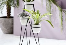 Bring the Garden Indoors / Plant stands and Indoor Plant decor ideas
