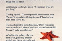 Starfish Diaries / Posts from the blog itself!