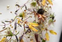 Kukkakorut ja korupohjat