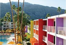Palm Springs dream
