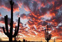 Arizona - My Travels / by Andrea DeBergalis