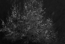 Instagram https://www.instagram.com/p/BOCxFduBKZ-/ December 15, 2016 at 10:43AM #ice tree #winterstorm