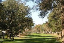 Golfing in Florida / Tee off on some of the finest fairways in the state of Florida in beautiful Ocala/Marion County.