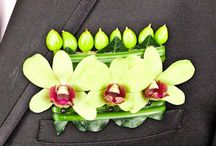 Groom's Boutonnières / by AboutFlowers