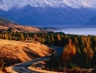 New Zealand / pays du seigneur des anneaux :)