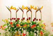Hanamasa Display flower / ハナマサの活け込みです。