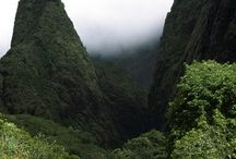 Visitor's Guide to Maui