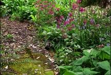 Garden Wonders