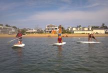 Paddle board yoga / Paddle board yoga in Provincetown