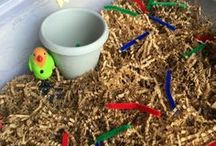 Feed the baby bird Sensory Play